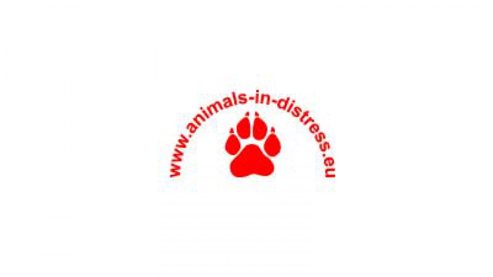 Animals In Distress Spain