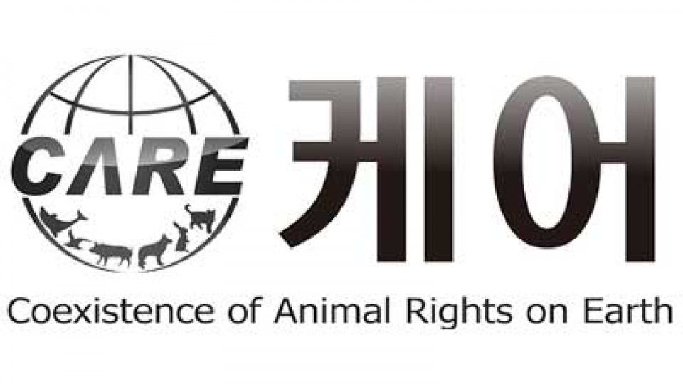 Coexistence of Animal Rights on Earth