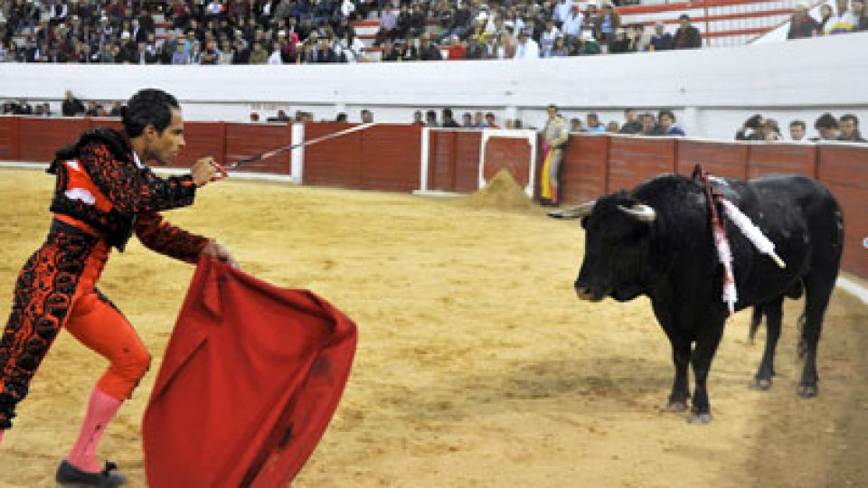Columbia Bullfight
