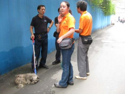 Animal Rescue and Disaster Relief