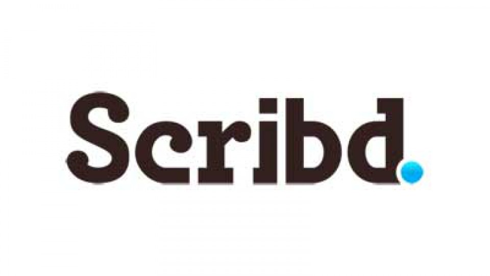 Scribd Toros and Taxes