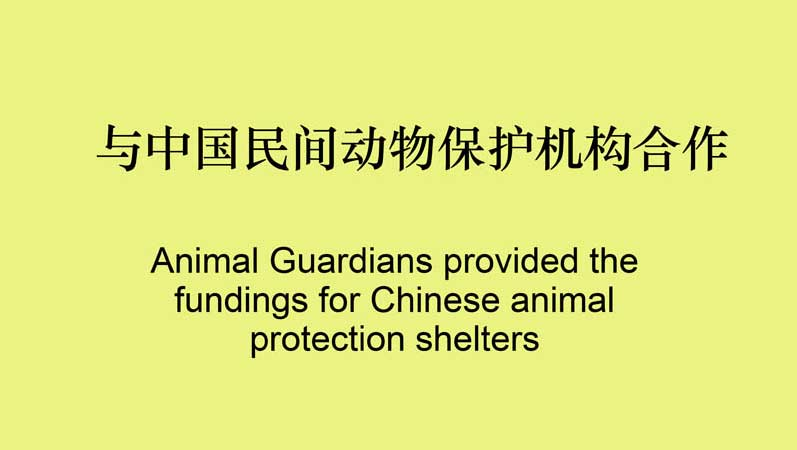 Animal Guardians